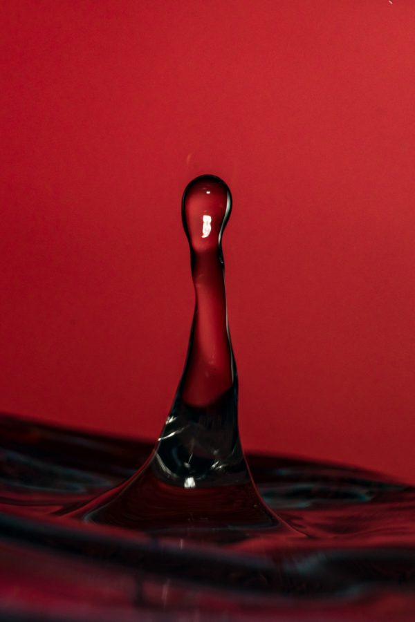close-up-drop-drop-of-water-2604919